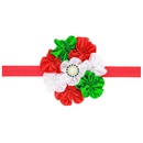 Cloth Fashion Flowers Hair accessories  red  Fashion Jewelry NHWO1027red