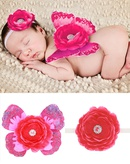 Cloth Fashion  Hair accessories  Rose redrose red  Fashion Jewelry NHWO1065Roseredrosered