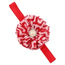 Cloth Fashion Flowers Hair accessories  red  Fashion Jewelry NHWO1155red