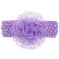 NHWO0793-purple