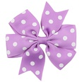 NHWO0809-Purple-white-point