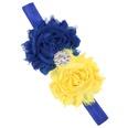 NHWO0874-Royal-blue-plus-yellow