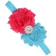 NHWO0874-Rose-red-plus-blue