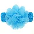 NHWO0901-blue