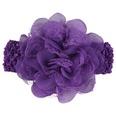 NHWO0901-purple