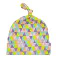 NHWO0985-Colored-triangle