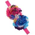 NHWO1096-Rose-cloth