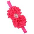 NHWO1096-Rose-red