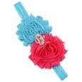 NHWO1096-Rose-red-plus-blue