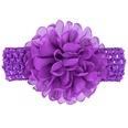 NHWO1098-Dark-purple