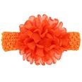 NHWO1098-Orange