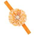 NHWO1155-Orange