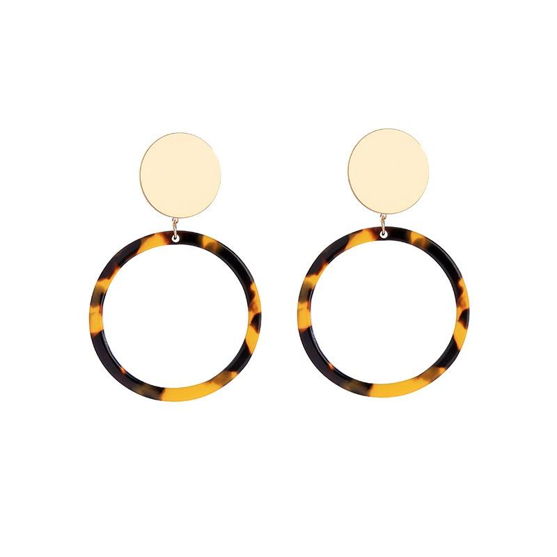 Acrylic Fashion Geometric earring  (Leopard-1)  Fashion Jewelry NHQD6250-Leopard-1