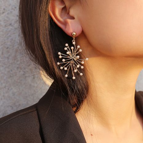 Alloy Fashion Geometric earring  (One alloy 1300)  Fashion Jewelry NHXR2737-One-alloy-1300's discount tags