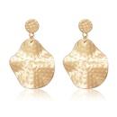 Alloy Fashion Flowers earring  61189466A  Fashion Jewelry NHXS230861189466A