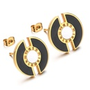 TitaniumStainless Steel Fashion Geometric earring  Black alloy  Fine Jewelry NHHF1314Blackalloy