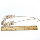 Alloy Fashion  necklace  necklace  Fashion Jewelry NHOM1401necklace