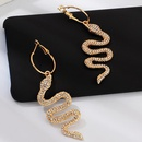 New fashion snakeshaped diamond earrings NHNZ157521
