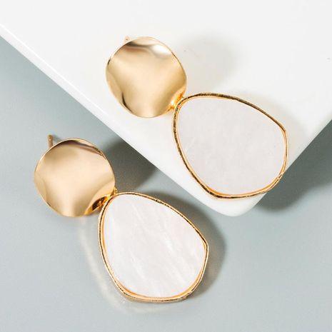 Earrings women fashion pop geometry earrings earrings acrylic alloy simple earrings NHLN173955's discount tags