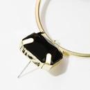 Lace Floral S925 Silver Earrings Feminine Leopard Stud Earrings NHJE174307