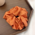 NHOF463927-Orange