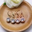 Golden Rose Gold Earrings Ear Hook Zircon Earrings Simple Fashion Earrings NHOM177585
