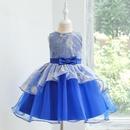 New girls wedding princess dress childrens dress pettiskirt small host catwalk gown costume NHTY180615