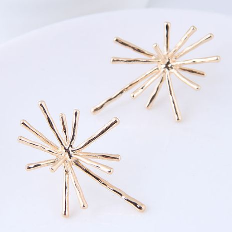 Boutique Korean fashion metal simple exaggerated temperament earrings NHSC181155's discount tags