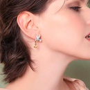 Alloy diamond drop oil bird earrings new jewelry fashion ear accessories NHJQ176175