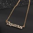 NHNZ496817-NZ1526--Aquarius-Aquarius