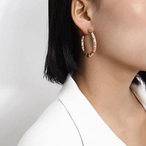 Hot selling earrings metal earrings fashion street jewelry NHJQ185862's discount tags