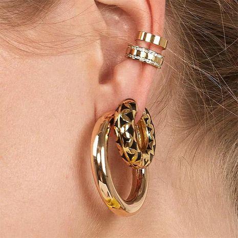 Fashion metal earrings simple geometric earrings wholesale NHJQ185876's discount tags