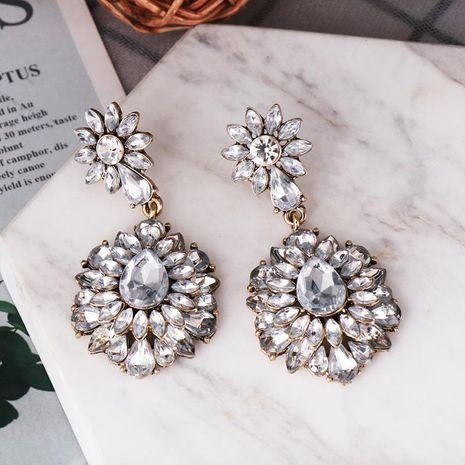 Wholesale Earrings Vintage Acrylic Ladies Earrings NHJJ187301's discount tags