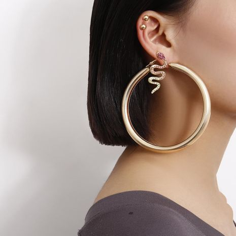 Jewelry Simple Hip Hop Set Earrings Spiral Hollow Round Colored Zircon Snake Stud Earrings NHXR189706's discount tags