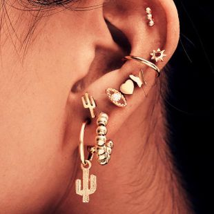 Women's Punk Cactus Eye Combination Ear Stud Ear Clip Combination Set of 9 NHPJ183991's discount tags