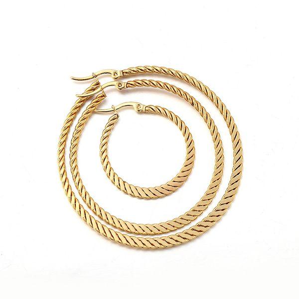 Titanium&Stainless Steel Fashion Geometric earring  (Alloy 3cm)  Fine Jewelry NHIM1601-Alloy-3cm