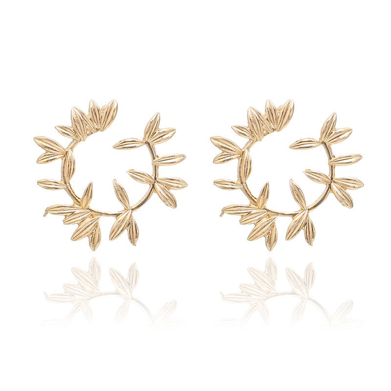 Alloy Fashion  earring  (Alloy)  Fashion Jewelry NHGY2985-Alloy