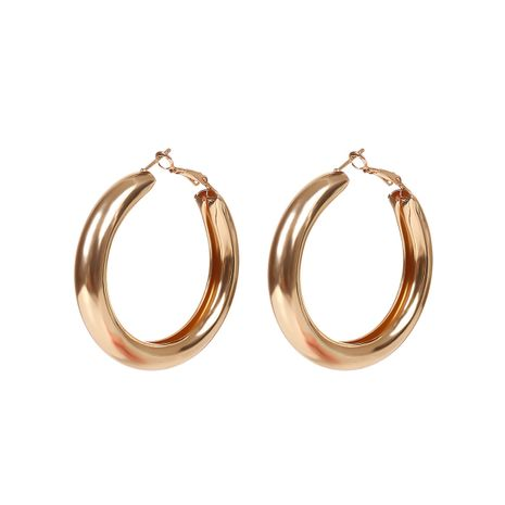 Alloy Fashion Geometric earring  (Alloy)  Fashion Jewelry NHYQ0043-Alloy's discount tags