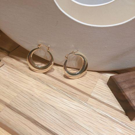 Alloy Fashion Geometric earring  (Alloy + steel needle)  Fashion Jewelry NHYQ0134-Alloysteel-needle's discount tags