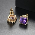NHTM30126-Purple-Zirconium-Plated-Champagne-Gold-T01B12