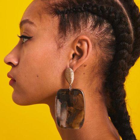 Womens Geometric High-end pattern acrylic  Earrings NHJJ121643's discount tags