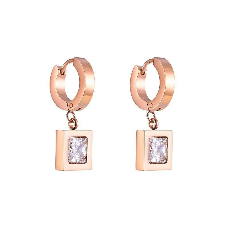 Womens Geometry Electroplated Titanium Steel Earrings NHOP123584