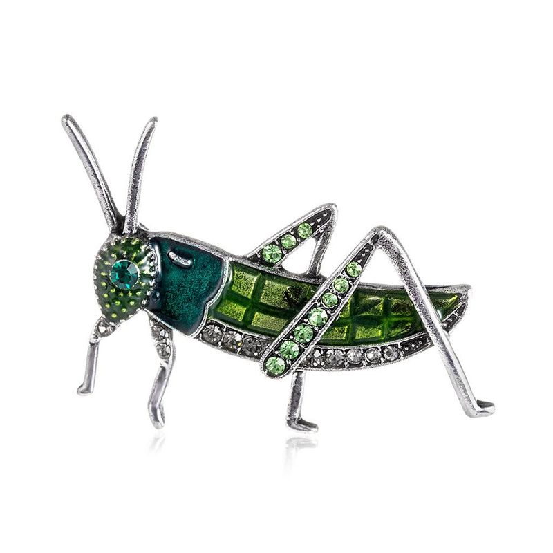 Womens Animal Dropper Alloy Danrun Jewelry Brooches NHDR124816