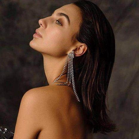 Womens Fringe Full length tassel Acrylic Earrings NHJE124966's discount tags