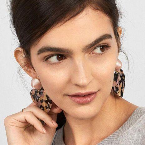 Womens Heart Shaped Acrylic Earrings NHBQ129200's discount tags