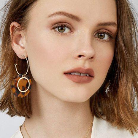 Womens Geometric Acrylic Earrings NHBQ129231's discount tags