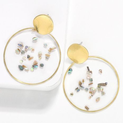 Womens Acetate Sheet Gravel Earrings NHJQ136403's discount tags