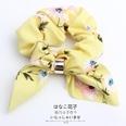 NHOF146333-Yellow-flower