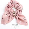 NHOF146334-Pink-flower