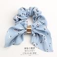 NHOF146338-Sky-blue-flowers